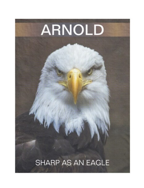 Arnold-Fleece-Blanket-2488204586-1535855586393.jpg