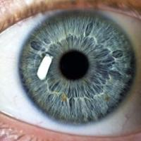 10 Interesting Facts About Eyes
