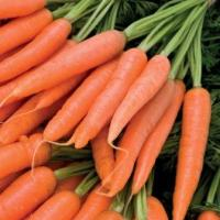 10 Amazing Nutritional Benefits of Carrots