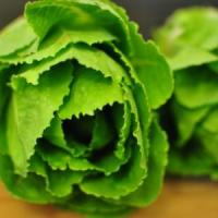 10 Amazing Nutritional Benefits of Romaine Lettuce