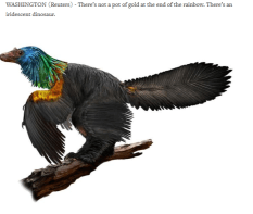 https://www.reuters.com/article/us-science-dinosaur/chinese-rainbow-dinosaur-had-iridescent-feathers-like-hummingbirds-idUSKBN1F415D
