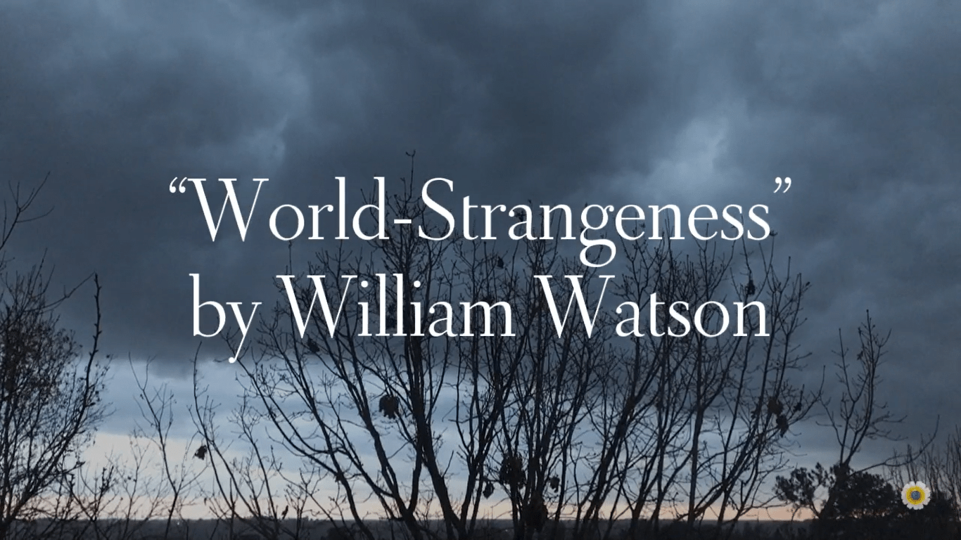 """World-Strangeness"""