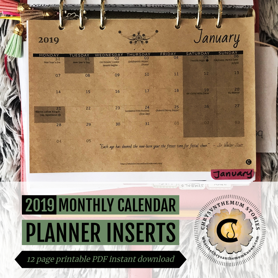 2019 Monthly Calendar Planner Inserts Printable Pdf Instant