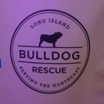 Long Island Bulldog Rescue Charity