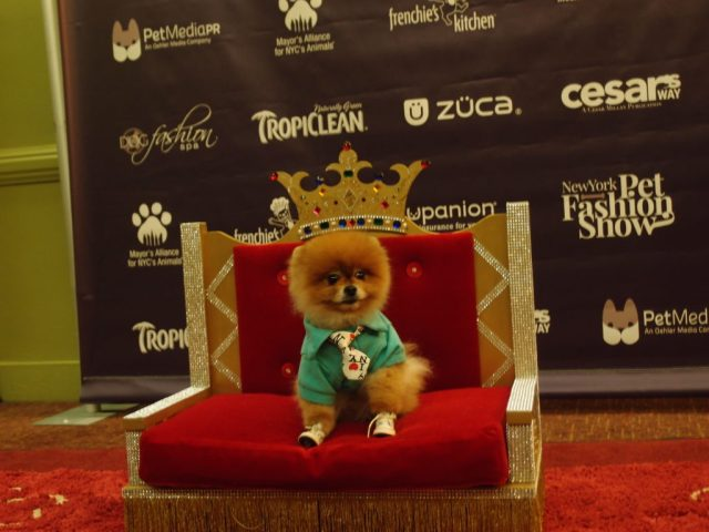 Tito The King