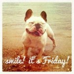 Happy Friday! The Daily Doost