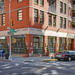 Visit the Jungle in NYC with Hotel Giraffe // For Travelers & Staycations
