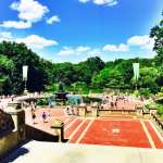 Adventures in Central Park ║ Pictorial & Quotes You'll Want to Share with Your Friends