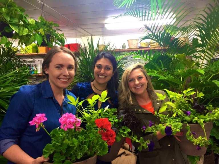 doost, gardening tips, plant tips 2