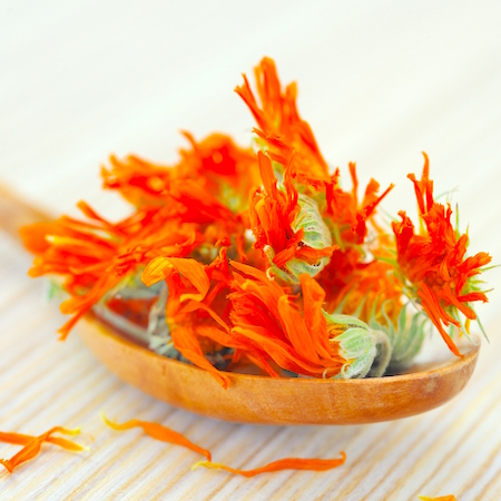 Calendula flowers for natural Calendula salve