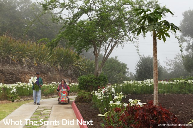 Angela joins Alex in the garden on a foggy morning at Rock Rose.