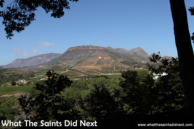 Groot Constantia wine farms sits among beautiful scenery.