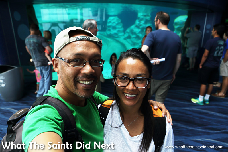For WTSDN this was definitely an excellent day out; our Atlanta aquarium tickets were excellent value.