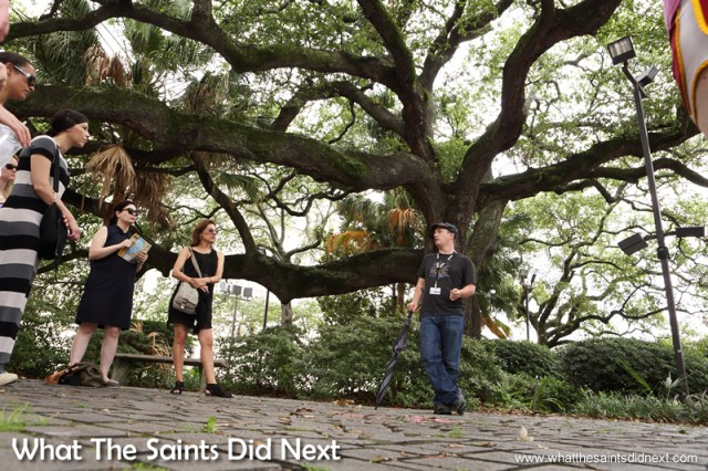 The Voodoo walking tour under the shade of a tree where it all began. Voodoo in New Orleans.