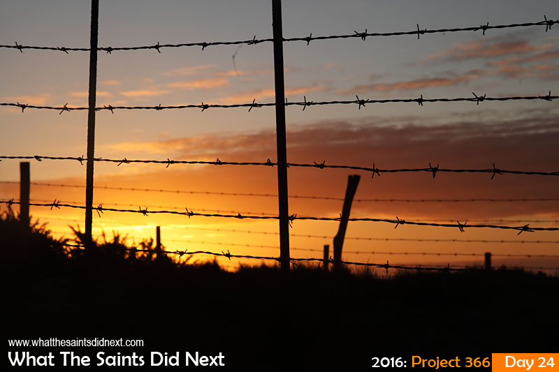 'Reclaim'<br /> 24 Jan 2016, 06:14 - 1/320, f/11, ISO-200<br /> Sunday sunrise against the barbed wire fence on the open fields of Deadwood Plain.