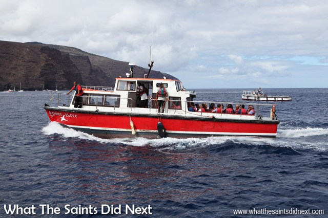 The Gannet Three carrying passengers ashore from the RMS St Helena earlier. The Gannet Three is a privately owned launch (Robert Bedwell) that can be chartered for various recreation activities on the water. They also organise different tours such as dolphin watching along the coastline.
