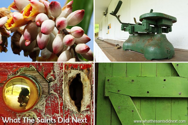 Sandy Bay throws up all manner of photography delights - just take a walk with the camera and all will be revealed! Clockwise from top left: Ginger flowers, shop scales at Thorpe's Grocery, traditional door, worn key chamber on door lock.