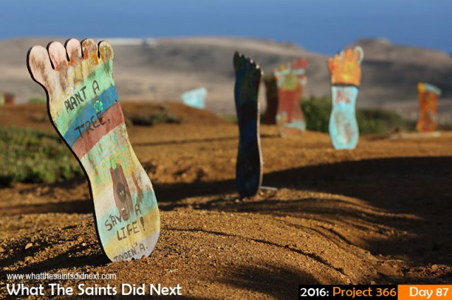 'Can't Eat Any More' 27 March 2016, 17:22 - 1/800, f/8, ISO-200 What The Saints Did Next - 2016 Project 366 Cut-out 'Conservation Footprints' through the Millennium Forest near Horse Point, St Helena.