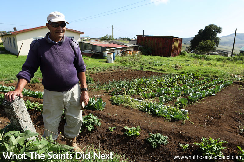 Freddy Crowie (85) tends a flourishing vegetable patch in his back garden on Longwood Avenue.