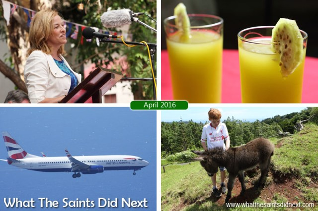 St Helena 2016: The Year In Review - April Clockwise from top left: Governor Lisa Phillips innauguaration speech. Tungi punch, homemade from delicious island tungi fruit. Matthew Owen introducing the St Helena Donkey Home's young foal, Geoffrey. British Airways 737-800, operated by Comair, about to discover wind shear at St Helena on 18 April.