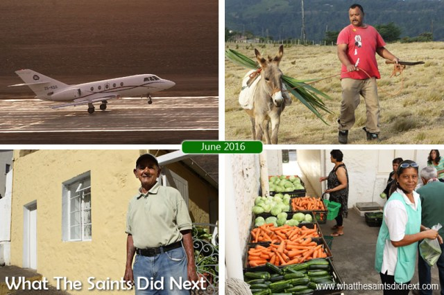 St Helena Island 2016: The Year In Review - June Clockwise from top left: First ever air medevac lifts off from St Helena Airport on 4 June. One of the island's few remaining working donkeys being led across Deadwood Plain. Vegetable day at Thorpes Grocery Store in Jamestown. Jamestown resident, Derek Bennett (85), tells us how he stays so fit as we tour the town.