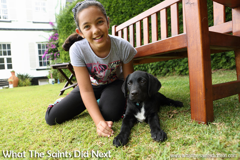 Jordanna and little Cooper. New Dogs, Old Tricks - Dusty's Dozen.