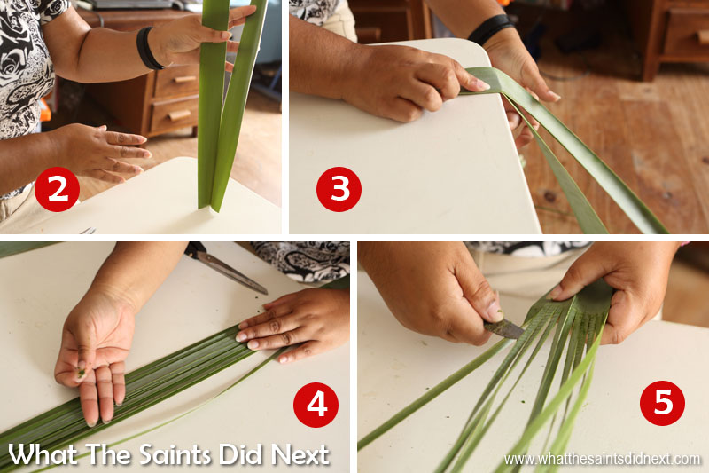 Wanda shows us how to prepare flax leaves to make a flax flower.