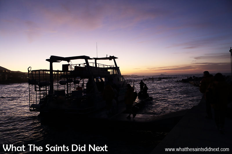 Our dive boat awaits in the early dawn light. 'Slashfin' is a custom made shark cage diving boat, very comfortable and very fast!