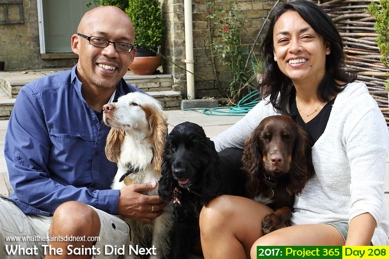 After 'a few' failed attempts, finally a group selfie with three beautiful Spaniels.