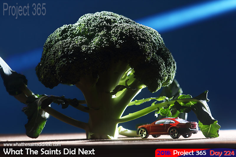 A car parked under a broccoli tree.