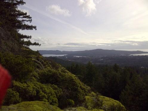 Bluff Mountain Ridge Trail
