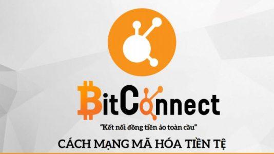 Смерть хомякам: BitConnect взлетел на 295% на фоне восстановления криптовалютного рынка