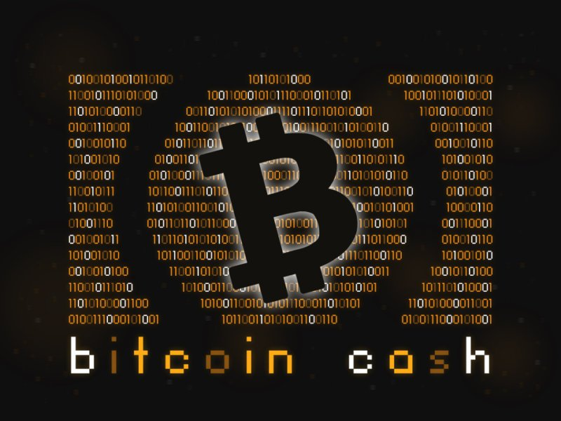 Разработчик Bitcoin Core нашёл критическую уязвимость в коде Bitcoin Cash