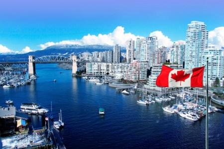 «Принятие криптовалют реально»: До 5% канадцев владеют биткоинами