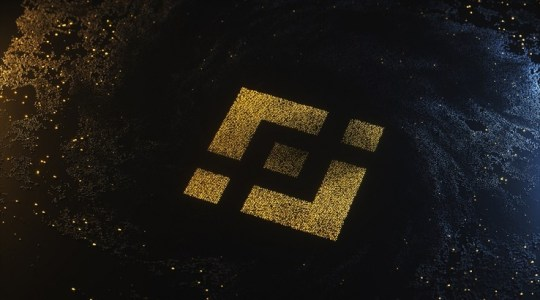 Binance DEX проведет первое IEO для Raven Protocol