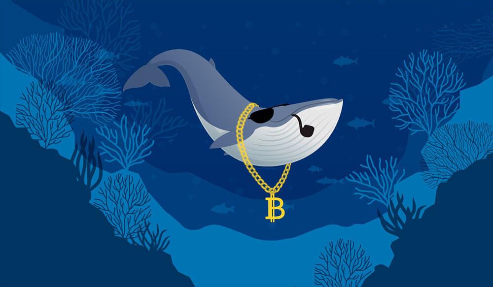 Биткоин-китов не смутили запреты в Китае, они продолжают покупать