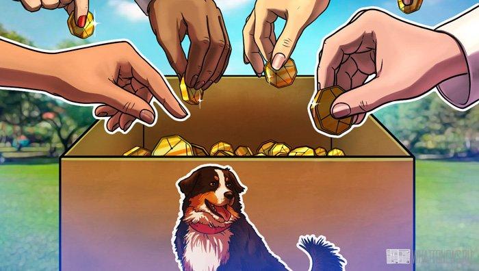 Криптовалюты мемы: перспективы и риски инвестиций в мем-коины
