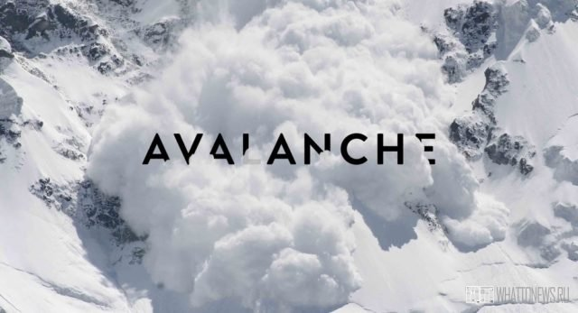 Почему растет цена Avalanche?