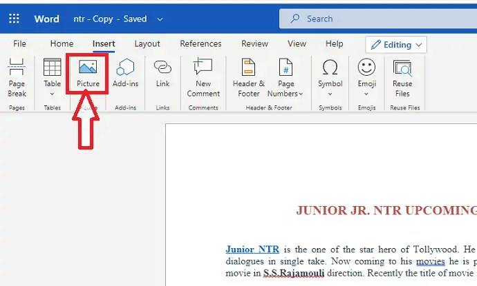 How to insert and format Pictures in word document 4