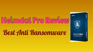 Heimdal Pro Review