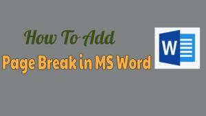 Add Page Break in MS Word