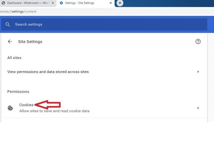 Cookies option on Google Chrome