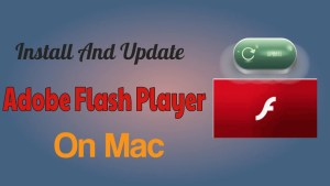Install and update Adobe Flash Player