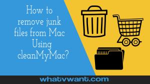 remove junk files