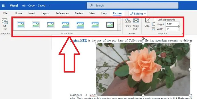 How to insert and format Pictures in word document 8
