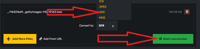 select the output format and click on start conversion.