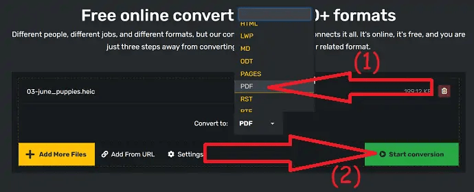Select the output format and start conversion.