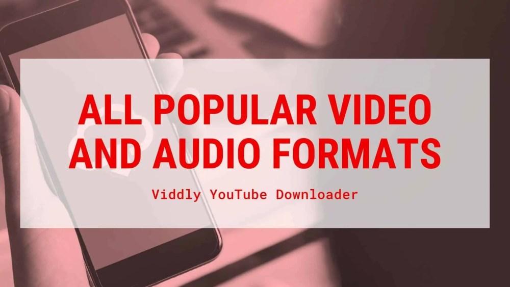 Viddly YouTube downloader formats
