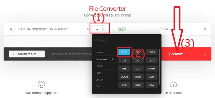 select the output format and click on convert