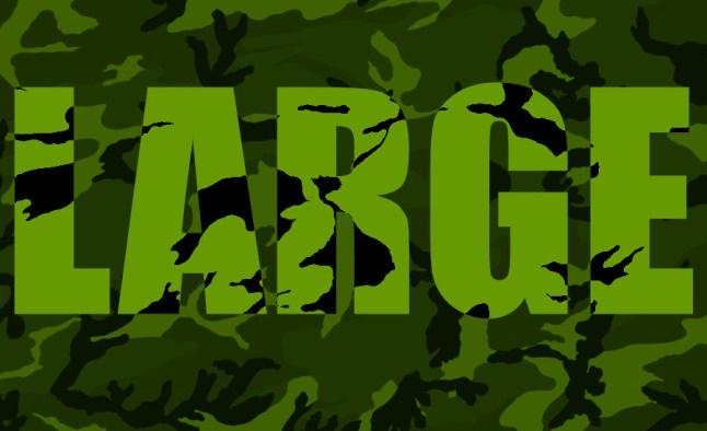 Camouflage Large Clique